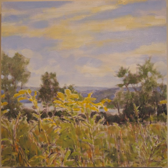 Daisy Craddock - August Field