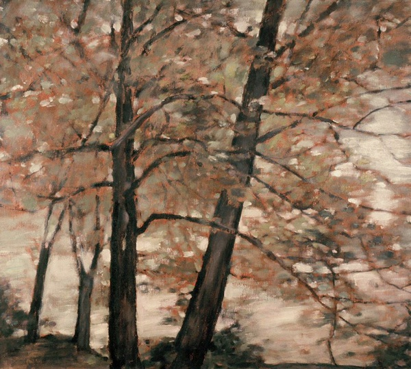 Daisy Craddock - River Birches