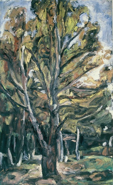 Daisy Craddock - Stand of Birches
